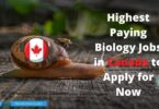 Highest Paying Biology Jobs in Canada to Apply for Now
